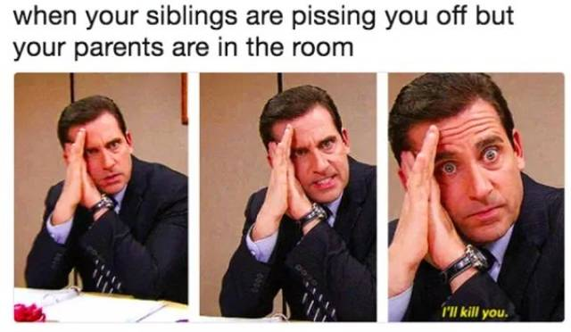 Memes About Siblings (28 pics)