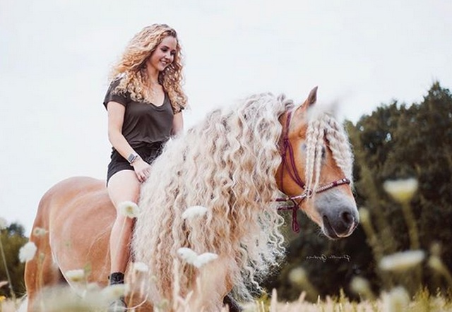 Rapunzel Of Horses (15 pics)