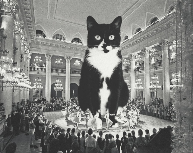 Cats Photoshopped Into New Year's Photos From The Former USSR (10 pics)