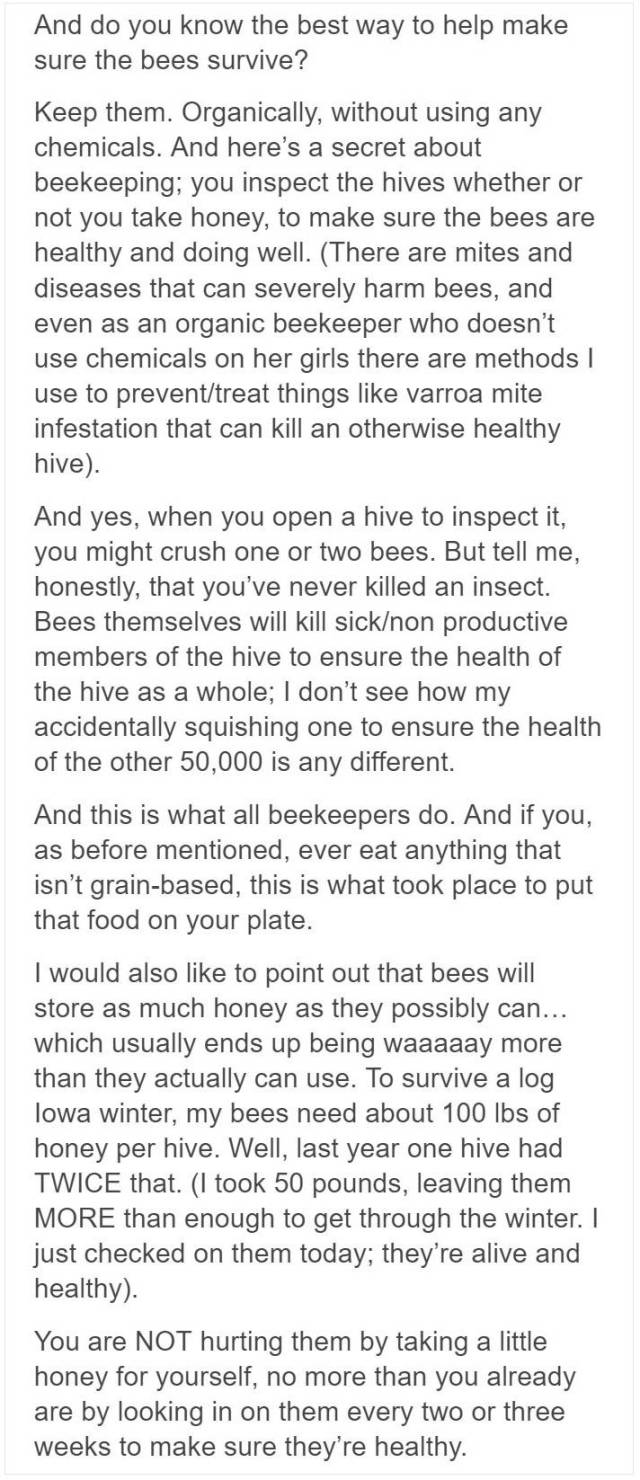 Beekeepers Try To Convince Vegans To Eat Honey (12 pics)