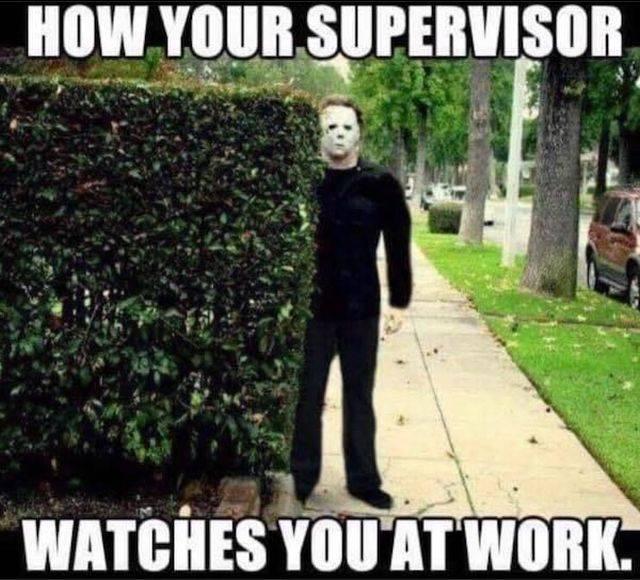 Work Memes (51 pics)