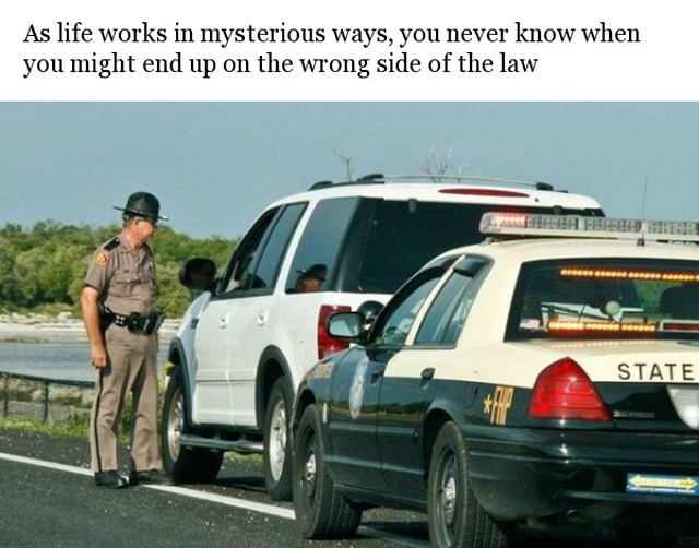 What To Do If We Ever Get Arrested (10 pics)