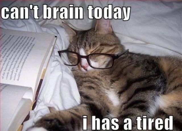 Tired Memes (35 pics)
