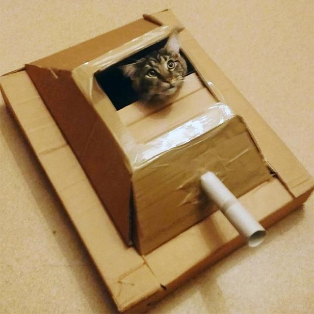 Cats In Cardboard Tanks (21 pics)