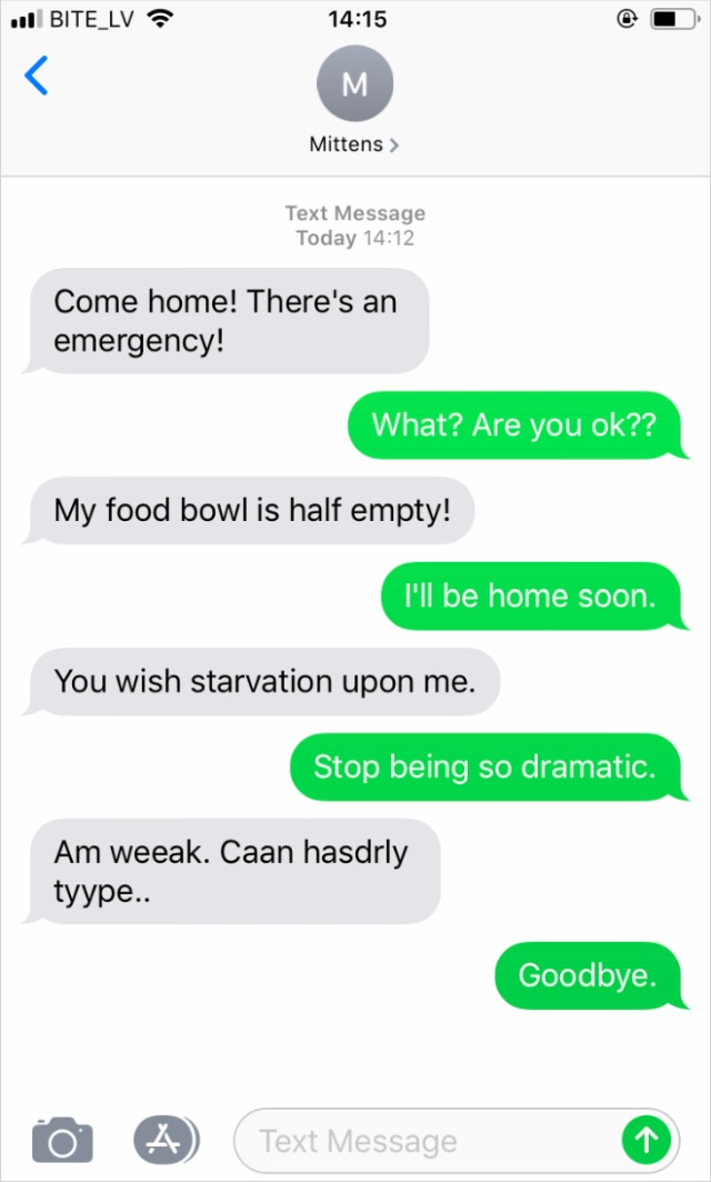 What If Cats Could Text? (18 pics)
