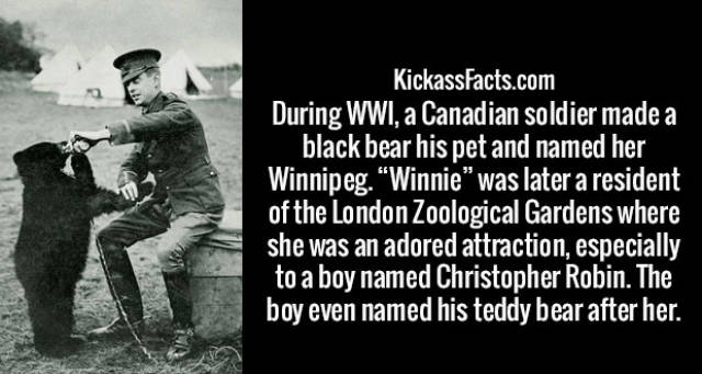 Interesting Facts (38 pics)