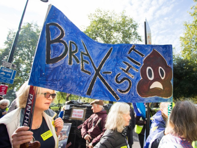 The Funniest Anti-Brexit Protest Signs (20 pics)