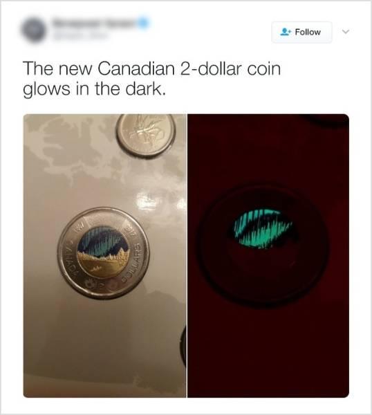 Only In Canada (39 pics)