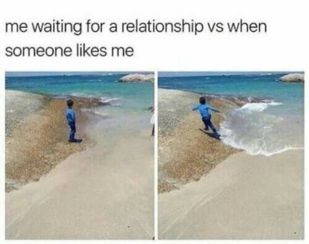 Memes About Singles (25 pics)