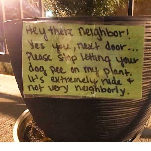 Bad Neighbors (21 pics)