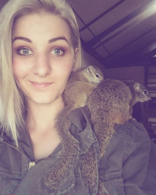 Rescued Squirrel (10 pics)