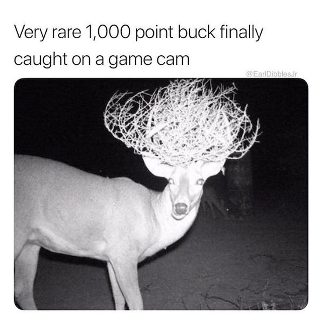 Redneck Memes (24 pics)