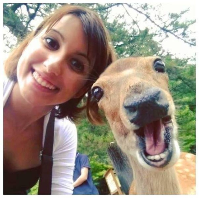 Perfect Selfies (20 pics)