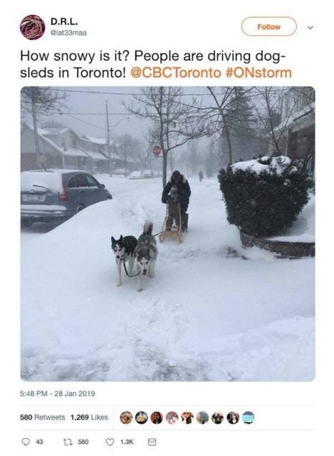 Snow Day Memes (29 pics)