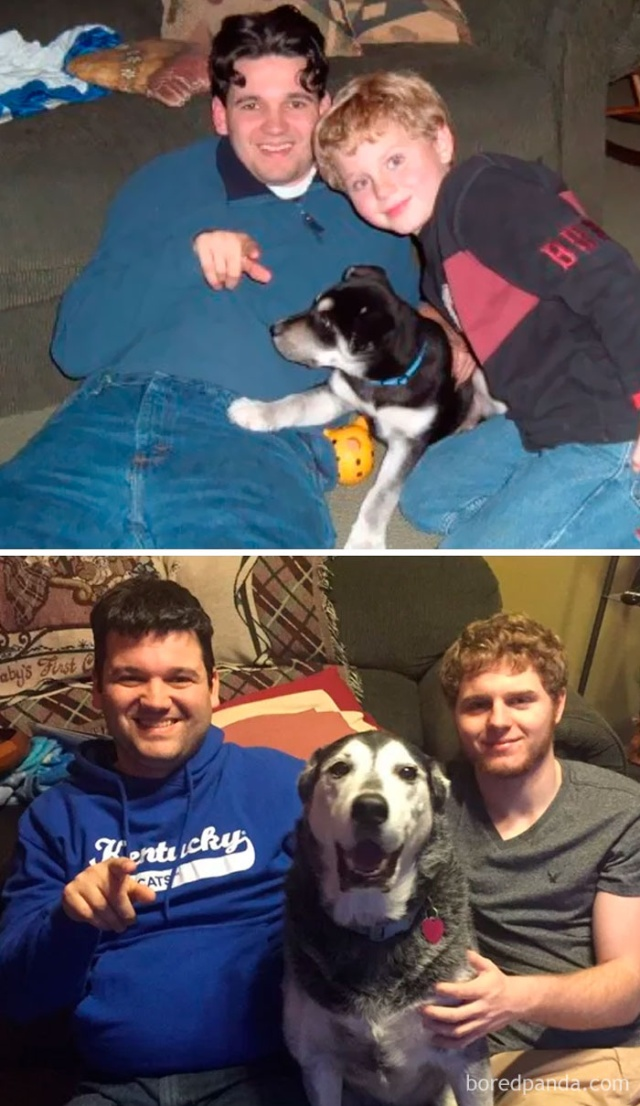 Dogs Growing Up Next To Their Owners (25 pics)