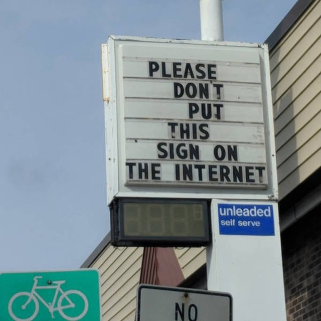 They Do What They Want (31 pics)