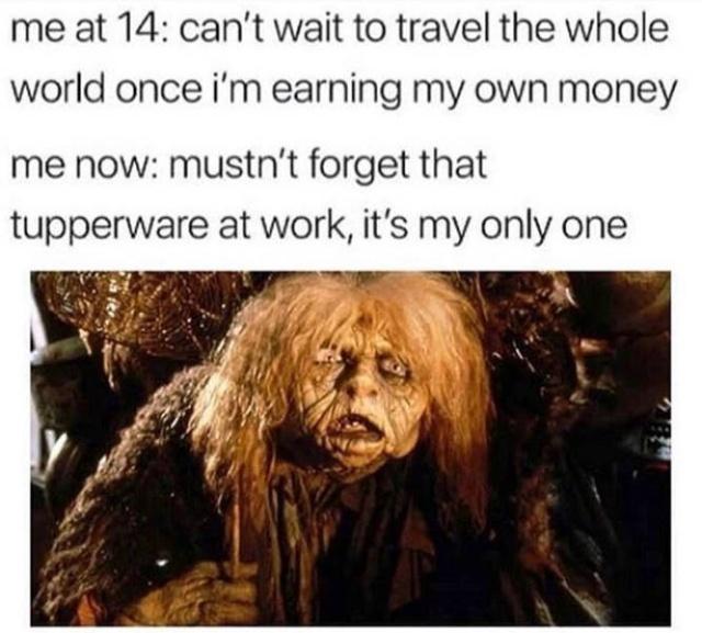 So True (39 pics)