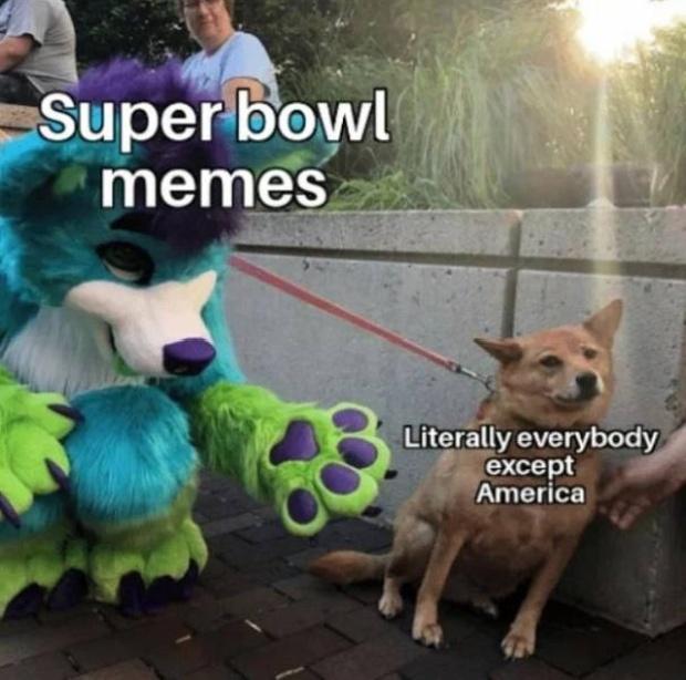 Super Bowl Memes (28 pics)
