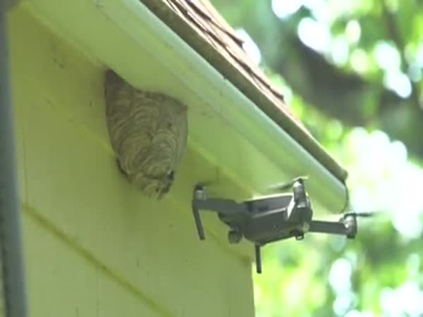 Drone Takes Out Hornets Nest With Ease