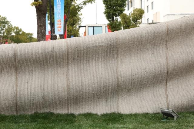 World's Longest 3D-printed Concrete Bridge In Shanghai (5 pics)