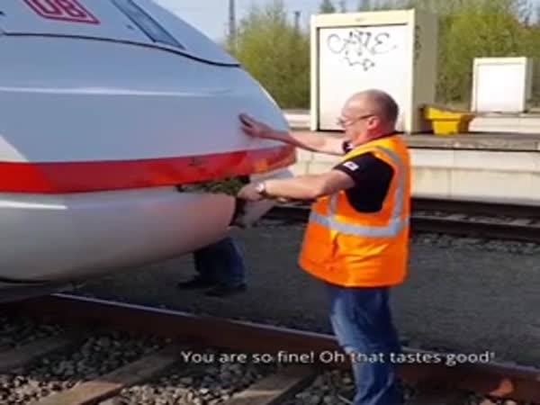Feeding A Train