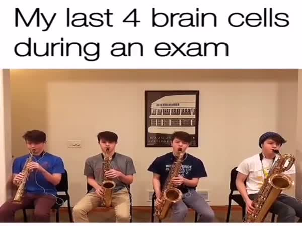 My Last 4 Brain Cells During An Exam