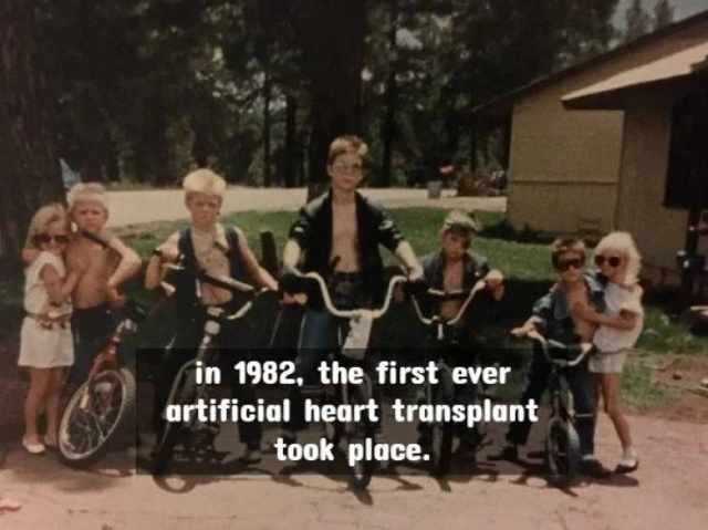 Facts About The 80's (20 pics)
