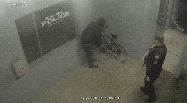 Police And Instant Carma (17 gifs)