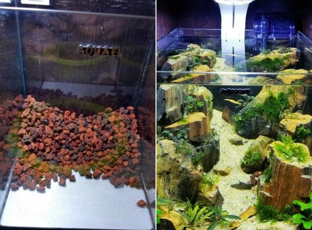 Making A Nice Aquarium (9 pics)
