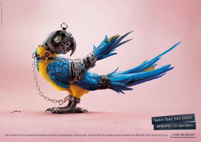 No Animal Wants To Be Tortured. Ad Campaign Against Animal Abuse (4 pics)