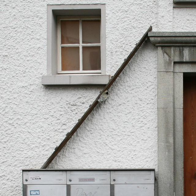 Cat Ladders In Switzerland (19 pics)