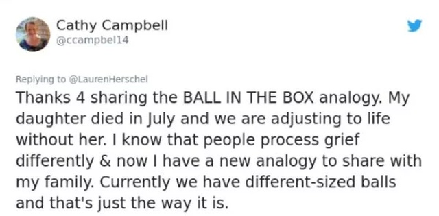 "The Must Read The ""Ball In The Box"" Analogy (9 pics)"