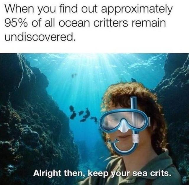 Funny Memes (45 pics)