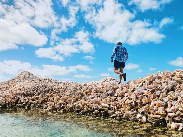 Conch Island – A Man-Made Island Built Out of Millions of Conch Shells (10 pics)