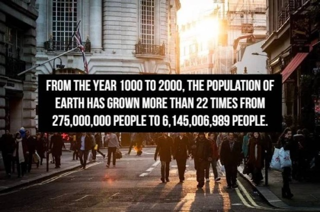 Very Interesting Numbers (17 pics)
