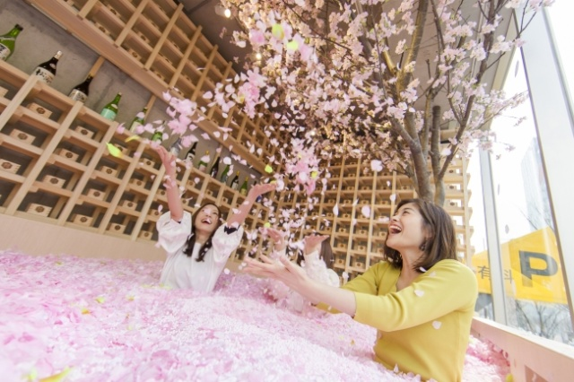 Cherry Blossom Bar In Tokyo (8 pics)