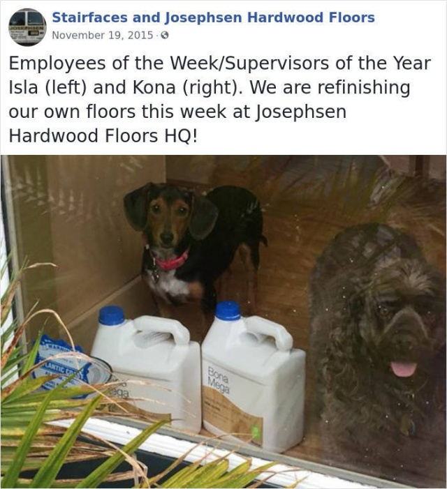 This Company Has Very Unusual Employees Of The Week (31 pics)