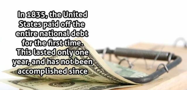Interesting Facts (22 pics)