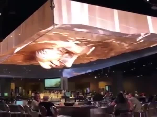 3D Display On Top Of The Ceiling Of A Restaurant