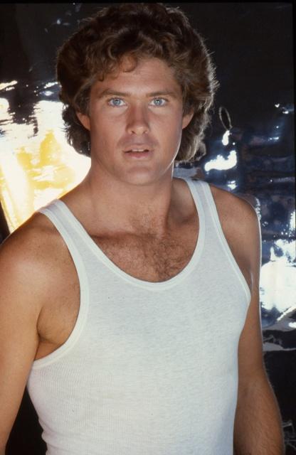 Cheesy Old Portraits of David Hasselhoff (18 pics)