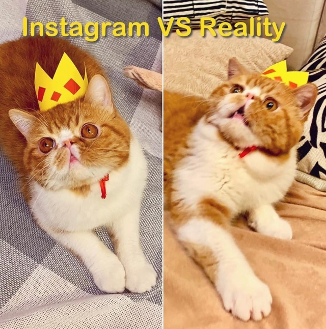 Instagram Vs Reality (19 pics)