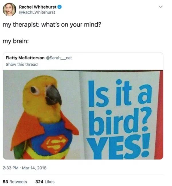 Memes (27 pics)