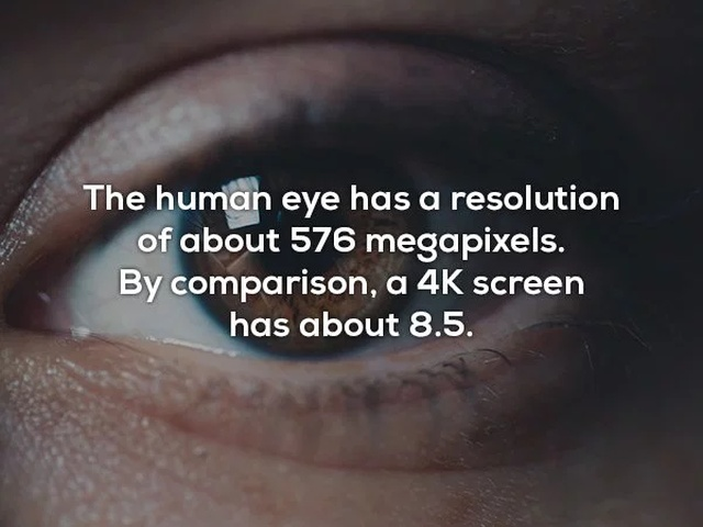 Interesting Facts (20 pics)