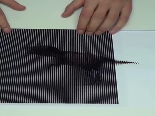 This Optical Illusion