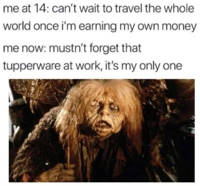Adulting? No One Does That (32 pics)