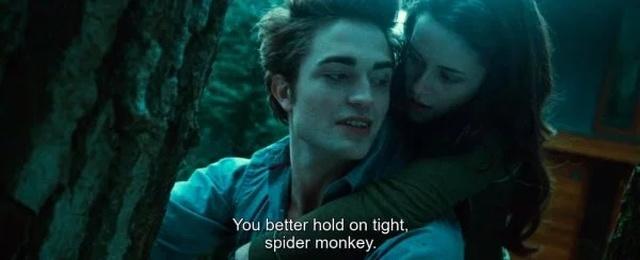 Twilight Saga Out Of Context (26 pics)