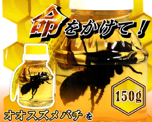 Honey With Hornets From Japan (4 pics)