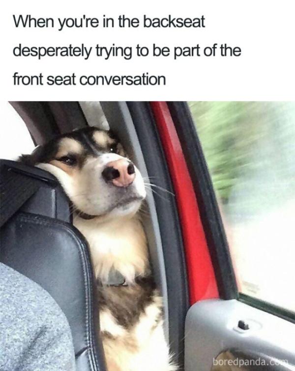 Travel And Vacation Memes (35 pics)