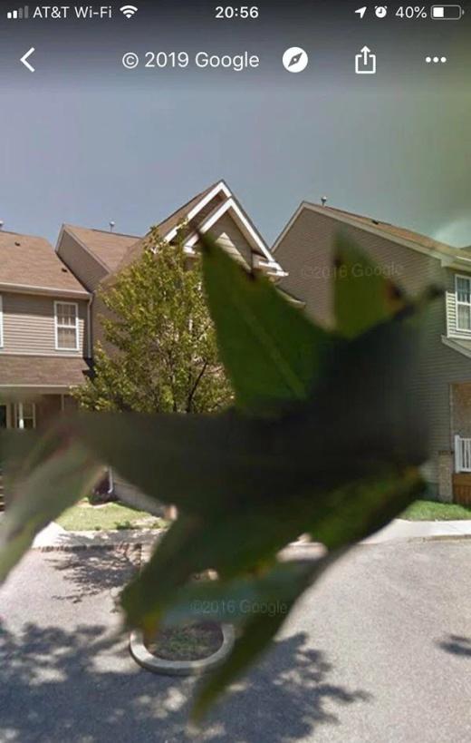 Google Maps Moments (20 pics)