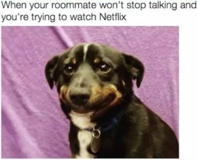 Living With Roommates Memes (31 pics)
